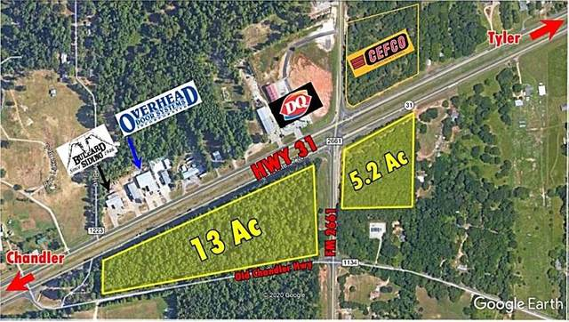 16151 W Hwy 31, Tyler, TX 75709 (MLS #55093616) :: All Cities USA Realty
