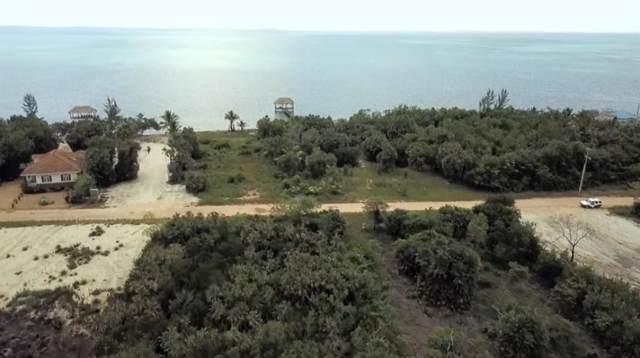 36 N Seine Bight Placencia North- Belize, Other, TX 99999 (MLS #55132309) :: Michele Harmon Team