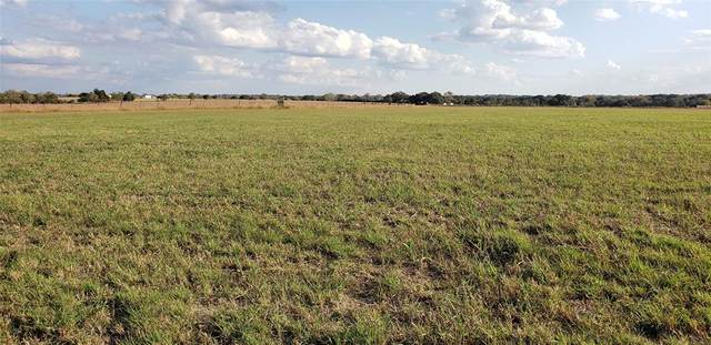 Tract A1- 2753 County Road 208, Hallettsville, TX 77964 (MLS #55158566) :: Lerner Realty Solutions