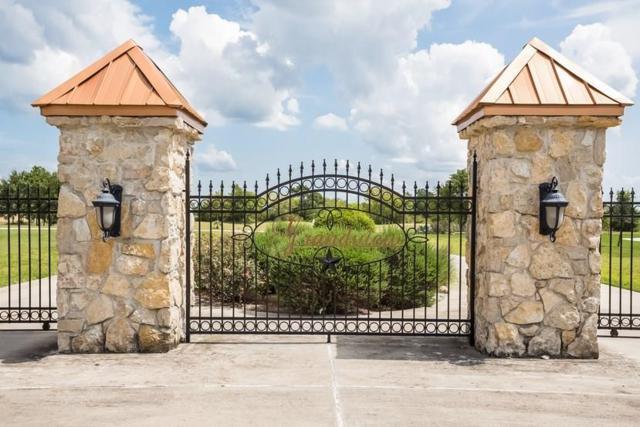 19178 Grandview Pt, Montgomery, TX 77356 (MLS #55298263) :: Texas Home Shop Realty
