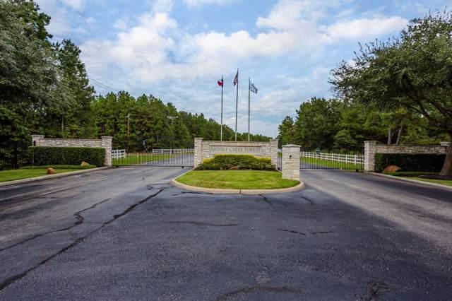 7709 Pony Court, Waller, TX 77484 (MLS #55388149) :: The Heyl Group at Keller Williams