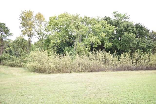 TBD24 Mary Lou Drive, Livingston, TX 77351 (MLS #55463676) :: Green Residential