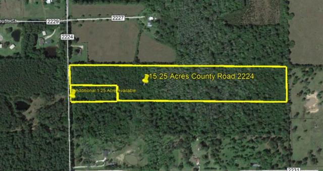 000 County Road 2224, Cleveland, TX 77327 (MLS #55516297) :: Giorgi Real Estate Group