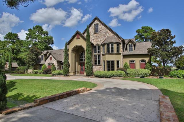 46 Florham Park Drive, Spring, TX 77379 (MLS #55532461) :: Grayson-Patton Team