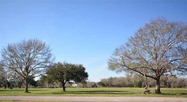 0 Riverview Ranch Drive, Brazoria, TX 77422 (MLS #55550159) :: Michele Harmon Team