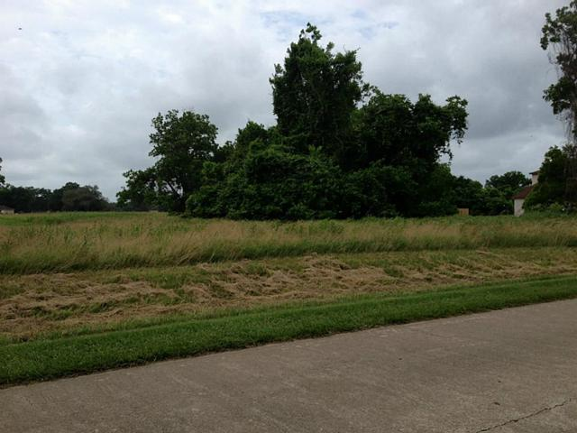 1525 Quarterhorse Trail, Angleton, TX 77515 (MLS #55585954) :: Giorgi Real Estate Group