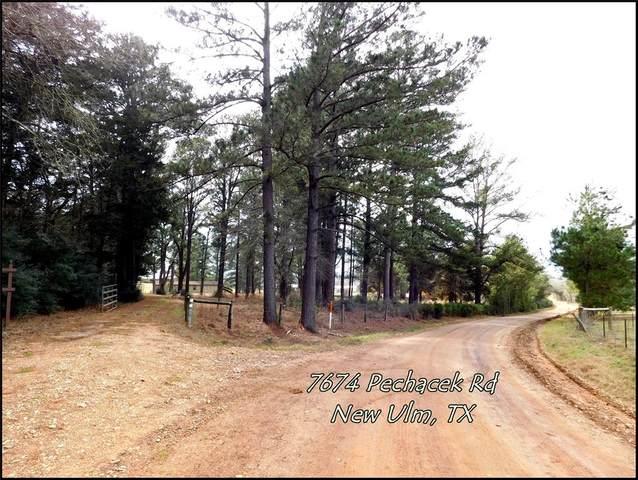 7674 Pechacek Road, New Ulm, TX 78950 (MLS #55682973) :: The Property Guys