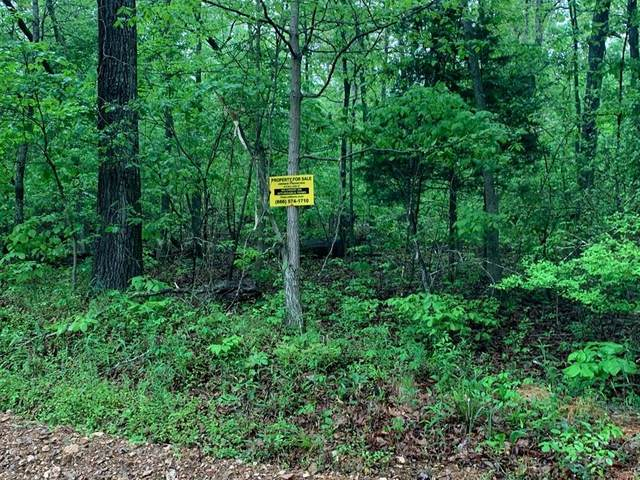 Lot 26 Hitching Post Drive, Other, AR 72482 (MLS #55685979) :: The Freund Group