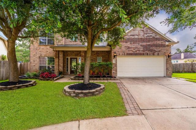 25106 Southbriar Lane, Katy, TX 77494 (MLS #55770542) :: The SOLD by George Team