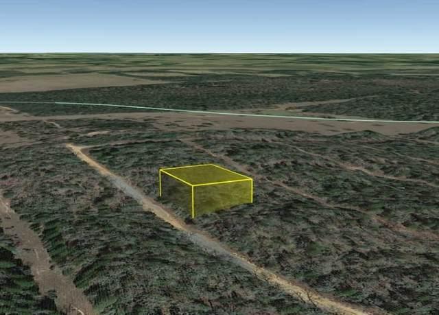 0 Ashford Trail Drive, Houston, TX 77082 (MLS #55862737) :: The Property Guys