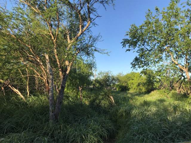99 County Road 618, Skidmore, TX 78389 (MLS #55876820) :: The SOLD by George Team