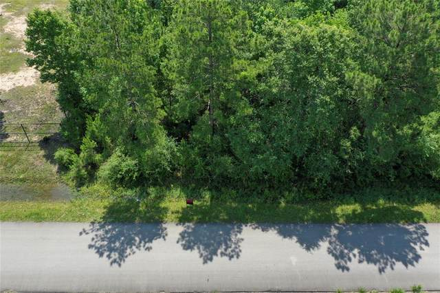 2211 County Road 3011, Dayton, TX 77535 (MLS #55917314) :: The SOLD by George Team