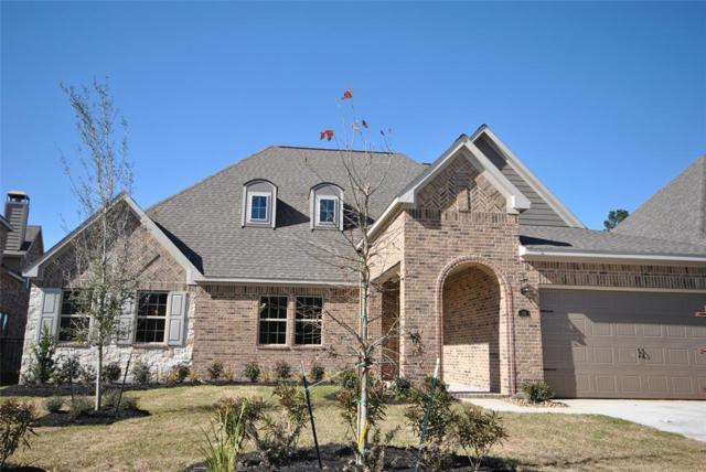 141 Canvas Back Drive, Montgomery, TX 77316 (MLS #55933432) :: The Home Branch