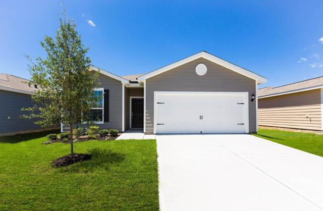 25036 Authors Drive, Magnolia, TX 77355 (MLS #55982353) :: The SOLD by George Team