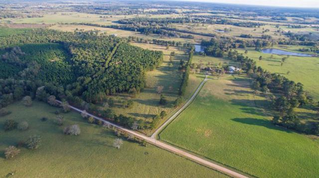 34 Ac Hardy Bottom Rd, New Waverly, TX 77358 (MLS #56036791) :: Caskey Realty