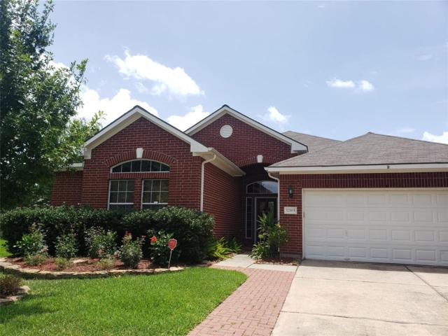 12163 Havenmist Drive, Tomball, TX 77375 (MLS #56038561) :: The Heyl Group at Keller Williams