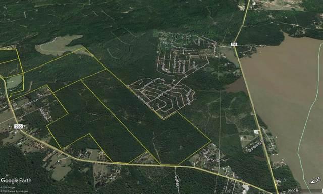 00 Fm 355/Chita Cemetery Rd, Trinity, TX 75862 (MLS #56038857) :: Texas Home Shop Realty