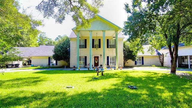 141 Water Oak, Village Mills, TX 77663 (MLS #56045864) :: Michele Harmon Team