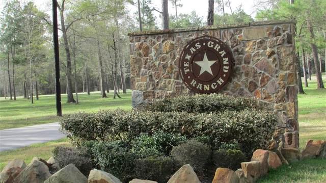 359 Dipping Vat Road, Huntsville, TX 77358 (MLS #56159614) :: The Home Branch