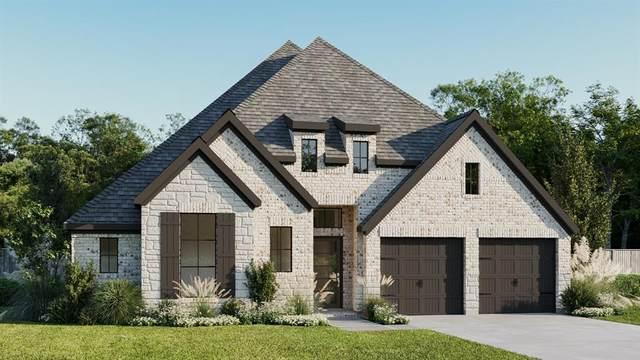 28903 Powder Ridge Drive, Katy, TX 77494 (MLS #56173588) :: The Bly Team
