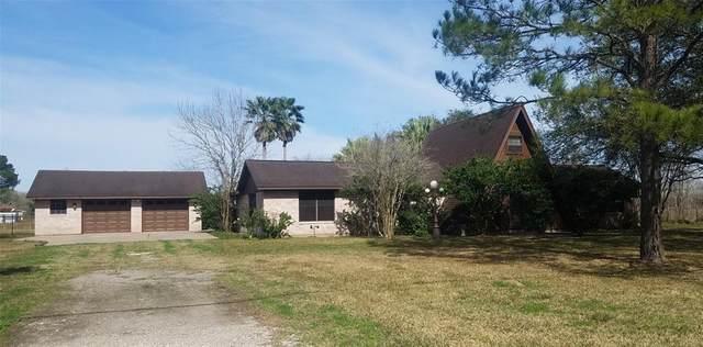 5003 County Road 380, Rosharon, TX 77583 (MLS #56228583) :: Area Pro Group Real Estate, LLC