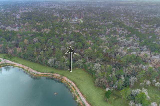 27427 Winding Creek, Magnolia, TX 77355 (MLS #56240145) :: The Heyl Group at Keller Williams