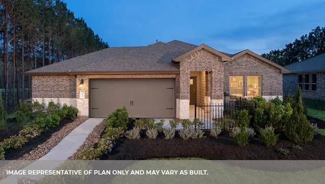 3522 Coles Canyon Lane, Katy, TX 77494 (MLS #56245713) :: The Freund Group
