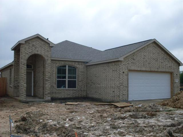 5318 Abbeville Court, Dickinson, TX 77539 (MLS #56299347) :: The SOLD by George Team