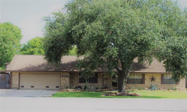 3519 E Plum Street, Pearland, TX 77581 (MLS #56303558) :: Connect Realty