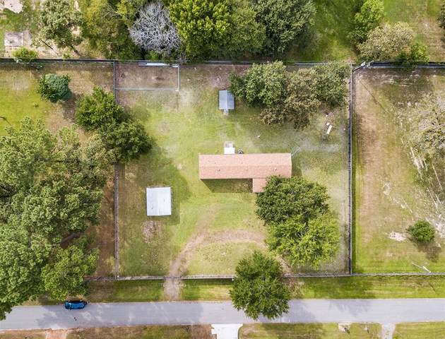 30219 Scotty Street, Magnolia, TX 77355 (MLS #56337354) :: Caskey Realty