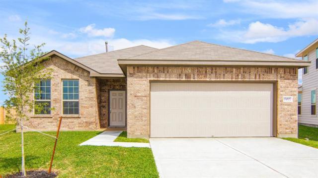 13007 Larriston Lane, Houston, TX 77044 (MLS #56347488) :: Christy Buck Team