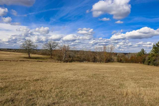 10+/- acres Fm 1486, Richards, TX 77873 (MLS #56375537) :: The Home Branch