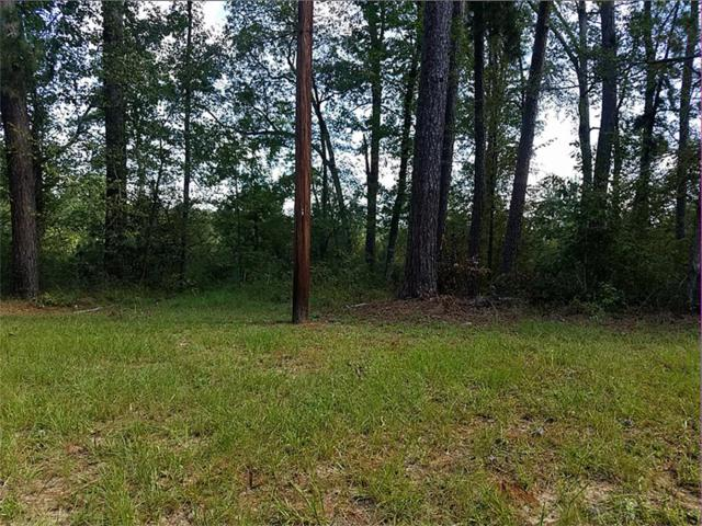 902 Lakeshore Point, Livingston, TX 77351 (MLS #56389140) :: NewHomePrograms.com LLC