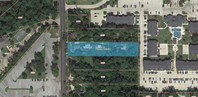 2303 Sycamore Avenue, Huntsville, TX 77340 (MLS #56394068) :: Christy Buck Team