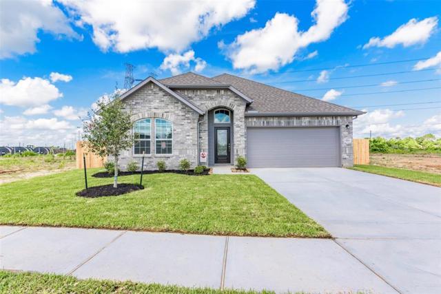 23106 Bordeaux, Alvin, TX 77511 (MLS #56443748) :: Texas Home Shop Realty