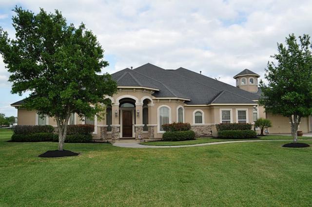 20222 Stone Cannon Court, Tomball, TX 77377 (MLS #56509388) :: Giorgi Real Estate Group