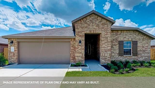 4034 Chester Bay, Missouri City, TX 77459 (MLS #56552455) :: Christy Buck Team