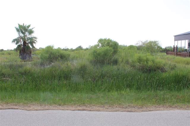 Lot 176 Van Sant, Gilchrist, TX 77617 (MLS #56562288) :: The Heyl Group at Keller Williams