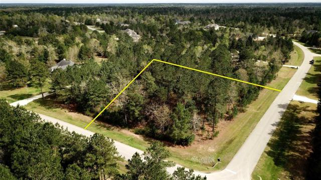 26239 Crown Ranch Boulevard, Montgomery, TX 77316 (MLS #56563739) :: The Home Branch