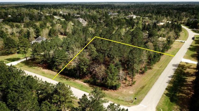 26239 Crown Ranch Boulevard, Montgomery, TX 77316 (MLS #56563739) :: Fairwater Westmont Real Estate