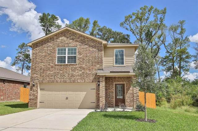 22627 Steel Blue Jaybird Drive, Hockley, TX 77447 (MLS #56571307) :: The Sansone Group
