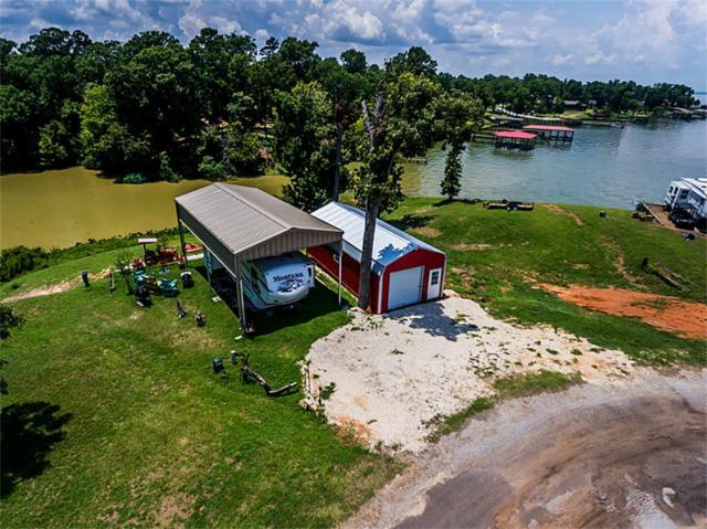 341 Coco Loop, Point Blank, TX 77364 (MLS #56617513) :: The SOLD by George Team