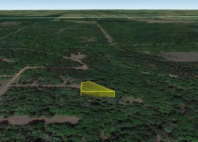 0 Lance Park Drive, Hempstead, TX 77445 (MLS #56623376) :: Michele Harmon Team