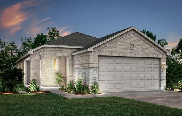 22647 Bolanzo Lane, New Caney, TX 77357 (MLS #56750760) :: Michele Harmon Team
