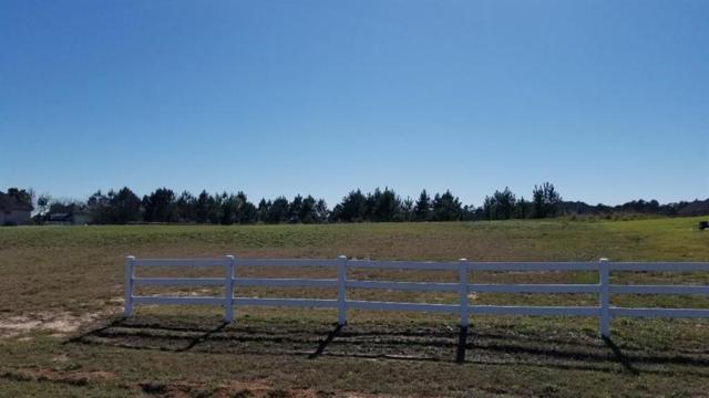 18425 Gary Player Drive, Montgomery, TX 77316 (MLS #56764479) :: Fairwater Westmont Real Estate