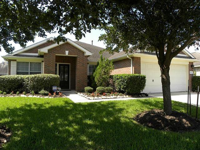 541 Small Cedar Drive Drive, League City, TX 77573 (MLS #56772680) :: The Sold By Valdez Team