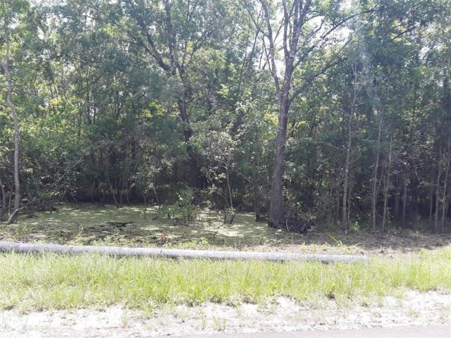 21.902 Acres Superior Road, Magnolia, TX 77354 (MLS #56775795) :: The Kevin Allen Jones Home Team