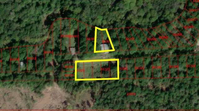 TBD Private Road 349, Cleveland, TX 77327 (MLS #56809600) :: Texas Home Shop Realty