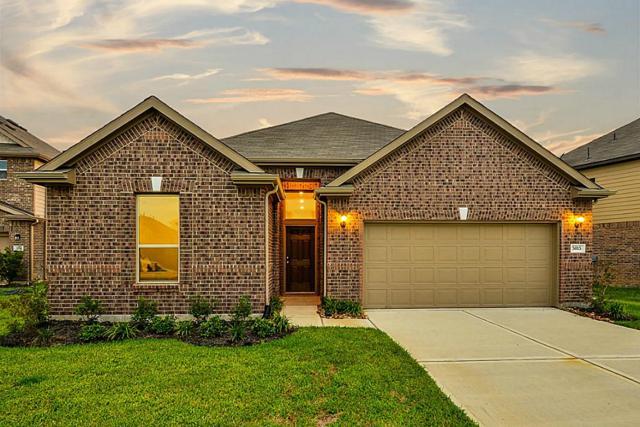 5015 Laird Forest, Katy, TX 77493 (MLS #56844251) :: Krueger Real Estate