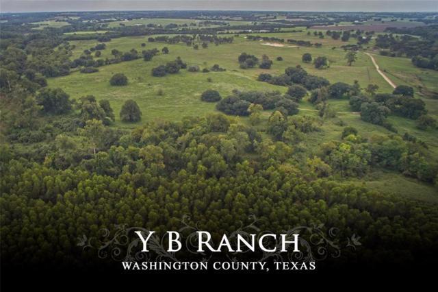 13409 Mertins Creek Road, Brenham, TX 77833 (MLS #56860468) :: Krueger Real Estate